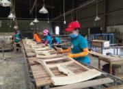 Với 9 tỷ USD xuất khẩu năm 2018, ngành gỗ và lâm sản đã đạt kim ngạch xuất khẩu cao nhất từ trước tới nay.